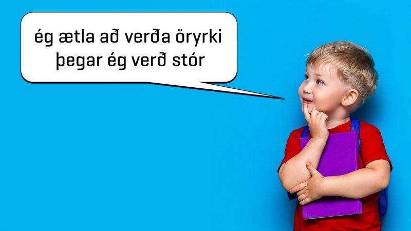 Ég ætla að verða öryrki þegar ég verð stór